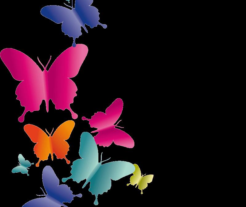 Accompagnement pluridisciplinaire du stress, du burn-out et de la transition de vie