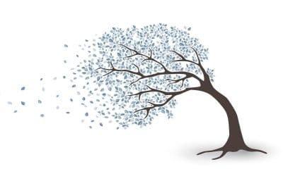Covid19 et MBSR: comment la pleine conscience peut nous soutenir par Olivier De Keyser, instructeur de méditation de pleine conscience